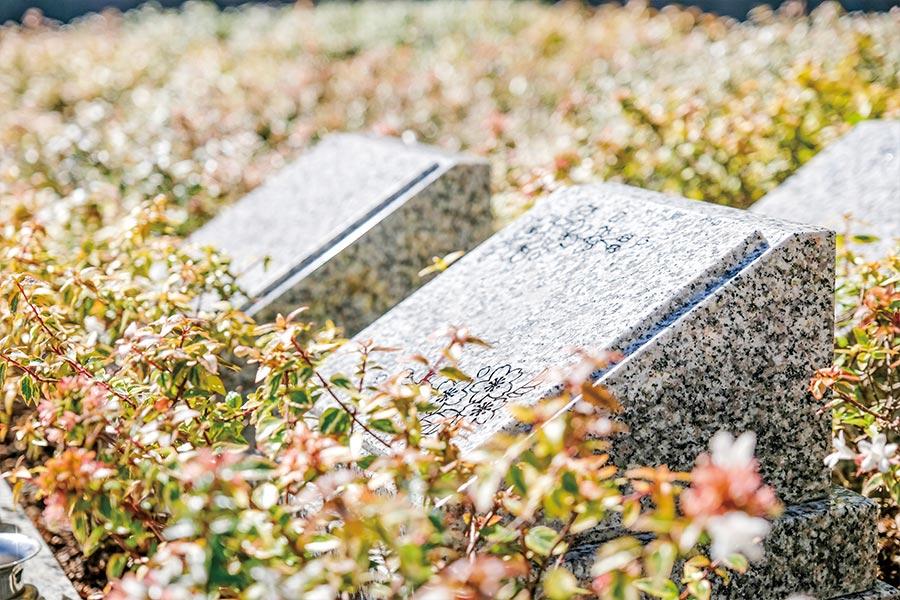 浄土苑の永代供養墓