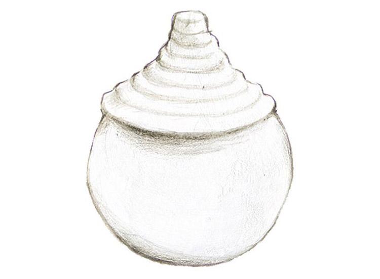 水玉(みずたま)