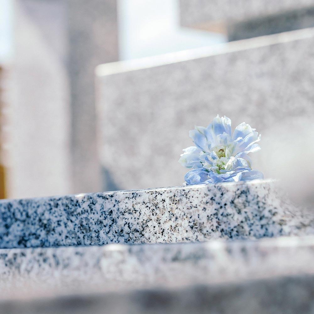 大日堂のお墓/洋墓Mのイメージ