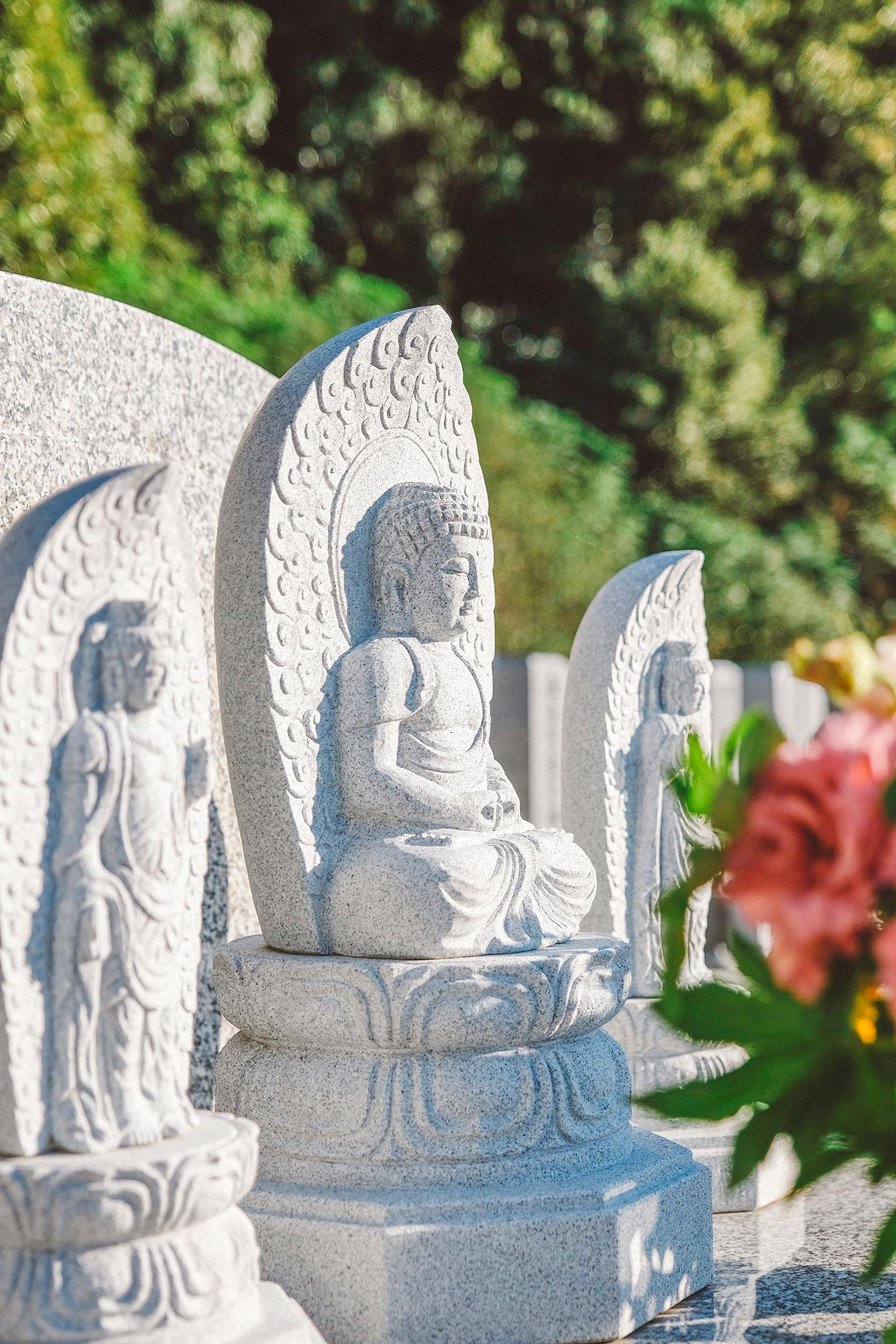根の谷川墓苑は、永代供養いたします。