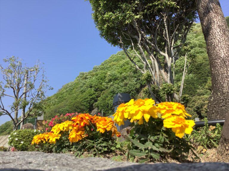 根の谷川墓苑